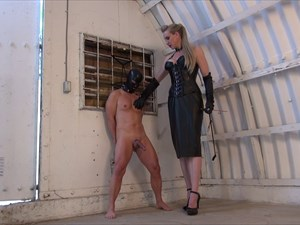 Goddess Severa - My little CBT loser Slave