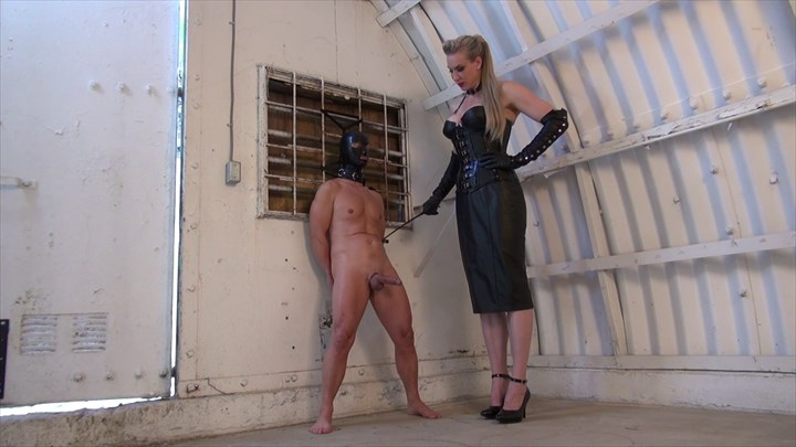 Goddess Severa - My little CBT loser Slave Leather CBT Tall Mistress Giantess Domination/FemDom