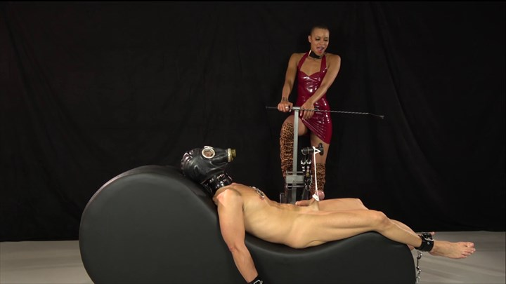 The Pain Slut Of Queen Qandisa CBT Nipple Torture