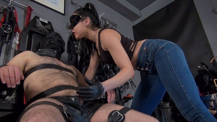 Milked By Mistress Gaia Fetish