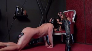 Mistress Sheyla - The Deepthroat CBT Dildo Sucking Strap On Deepthroat
